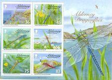 Alderney-Dragonflies min sheet mnh(2010)