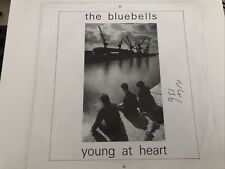 """New listing The Bluebells - Young At Heart 7"""" Vinyl Single Record P/S"""