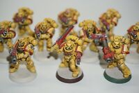 Warhammer 40k Space Marine Imperial Fists Tactical Squad x 10 Painted LOT 501