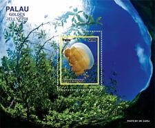 Palau 2019   fauna  golden Jellyfish  I201901