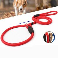 Pet Dog Adjustable Nylon Rope Training Leash Slip Lead Strap Traction Collar