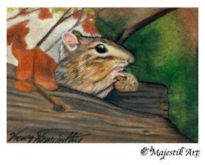 "Archival ACEO Print Squirrel Wildlife Animal ""Mine"" By V Kenworthy"