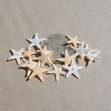 50Pc Mini Starfish Sea Star Shell Beach Wedding Craft DIY Making Decor Miniatur