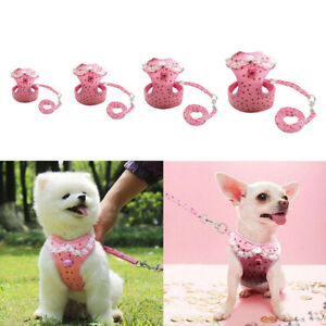 Mesh Padded Small Dog Harness Leash Set Pet Cat Puppy Vest for Chihuahua S-XL