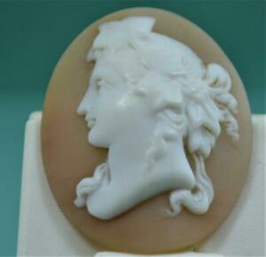 Victorian 19 c  Fine Shell Cameo Brooch setting for reuse 32 x 26 mm no framex