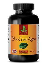 Premium Quality BLUE GREEN ALGAE 500mg - Anti Aging Klamath Lake Stem Cell - 1B