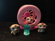 Littlest Pet Shop Petriplets baby Hamsters #1477-1478-1479
