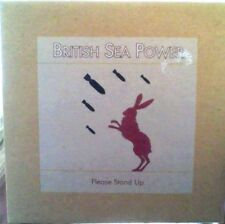 British Sea Power Please Stand Up Vinyle 7""