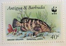 ANTIGUA & BARBUDA Scott #1007 ** MNH, WWF, NASSAU GROUPER, fine   Superfleas