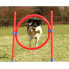 Rosewood Agility Hoop Jump for Dogs 51cm