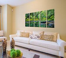 Forest stream print on canvas 5 panel print, stream canvas rainforest wall art