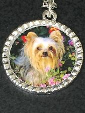 "Yorkshire Terrier Dog Charm Tibetan Silver with 18"" Necklace B"
