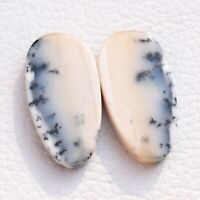 30.9 CT Natural Dendrite Agate Black white cabochon 1pair Fancy 26X13X3 Gemstone