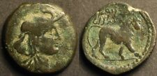 Kings of Numidia, Juba I AE23. Head of Africa / Lion