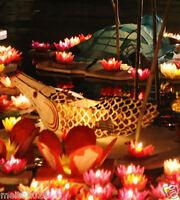 10/50/100X Floating Water Light Paper Lotus Flower Wishing Lamp Lanterns DIY Dec