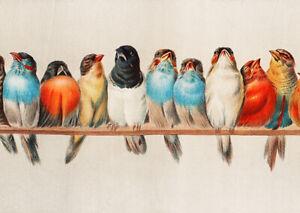 Perch of Birds (1900) Hector Giacomelli wall art poster print A5 A4 A3 decor