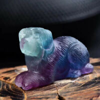 TOP! Hand Carved dog  Natural Fluorite Quartz Crystal Gift Healing 1pc