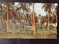 Puerto Rico ca1907-1930s, Tarjeta Postal-Post Card, usada/cancelada U.S. SEAPORT