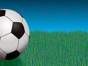 Painting Illustration Sport Football Ball Field Grass Canvas Art Print
