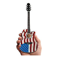 Toby Keith USA American Flag Patriotic Acoustic Guitar Replica Model Collectible