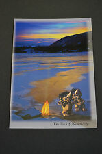 NyForm Troll - Norway, Ansichtskarte / postcard