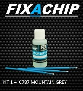 MERCEDES CAR TOUCH UP PAINT - CODE C787 - MOUNTAIN GREY (KIT 1)