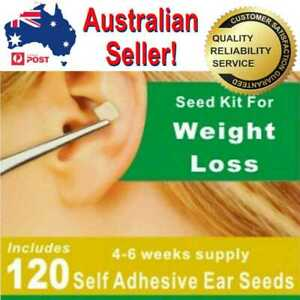 Weight Loss Ear Seeds Auriculotherapy Acupuncture Needle Seed Kit