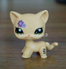 Rare Hasbro Littlest Pet Shop LPS Purple flower Kitty Cat Green Eyes Toys #1962