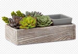 💕 Scentsy 💕 Suc-cute-lent Warmer 💕 Brand New in box 💕 wax faux plants 💕