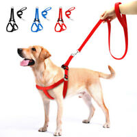 No Pull Padded Dog Harness and Leads Leash set Adjustable for S/M/L Dogs Boxer
