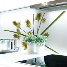 Küchenrückwand Cyperus Blume  Premium Hart-PVC 0,4 mm selbstklebend