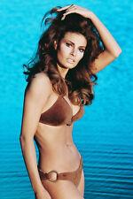 Raquel Welch brown bikini in ocean Perfect figure Sexy Pin Up 11x17 Mini Poster