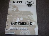 yamaha yfm 250 x beartracker service manual 1998 2001