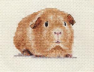 GUINEA PIG ~ Complete counted cross stitch kit  *FIDO STITCH STUDIO