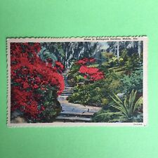 Scene in Bellingrath Gardens Mobile Alabama Unposted Postcard