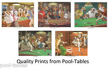 POOL SNOOKER TABLE DOG PRINTS PICTURES  SET OF 5 BY SARNOFF  FREE POSTAGE
