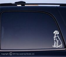 Weimaraner Dog vinyl decal gun dog Best in show puppy sm