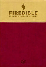 Fire Bible ESV (English Standard Version) Tan/Berry Soft leather-look, 2014