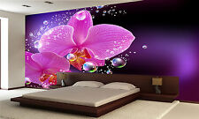 Orchid  Wall Mural Photo Wallpaper GIANT DECOR Paper Poster Free Paste