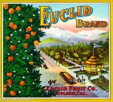 Upland California Euclid Mt. Baldy Orange Citrus Fruit Crate Label Art Print