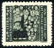 Occupazioni Istria e Litorale Sloveno 1945 Segnatasse n. 1 * (m1623)