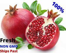 Organic Pomegranate Tree Seeds Punica granatum Super Fruit Edible Sweet Fresh
