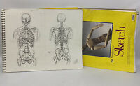 Lot of Academic Anatomy Figure Drawings Sessions Pad Portfolio Richard Gaffield