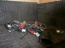 Moto Roma Road Runner 50 01 02 Wiring Loom