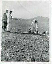 1950s SKY DIVING - Original Photo # 7