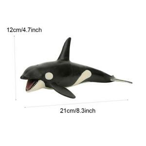 Killer Whale Model Toy Wonderful Gift Exquisite Workmanship Educational Toy