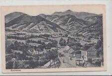 73898/31- Eschenau bei Waidhofen an der Thaya in Vitis um 1920