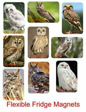 Owls Flexible Fridge Magnets set of 9 use on any metal surface children's item