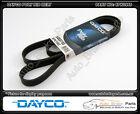 Dayco Poly Rib Drive Belt suit HOLDEN BERLINA VT 5.7L V8 (LS1) - 6PK1995