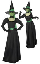 a151a983eef Smiffys Womens Halloween Wicked Witch Ladies Fancy Dress Party Costume Size  8-10 33134s